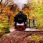 Turismo ferroviario, business da sfruttare in Calabria