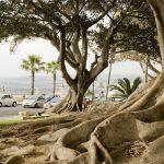 Reggio Calabria, un weekend all'insegna della cultura